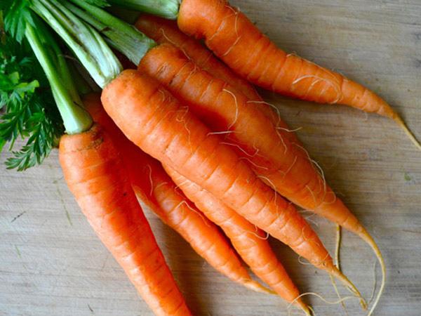 Cà rốt rất tốt cho bé ăn dặm