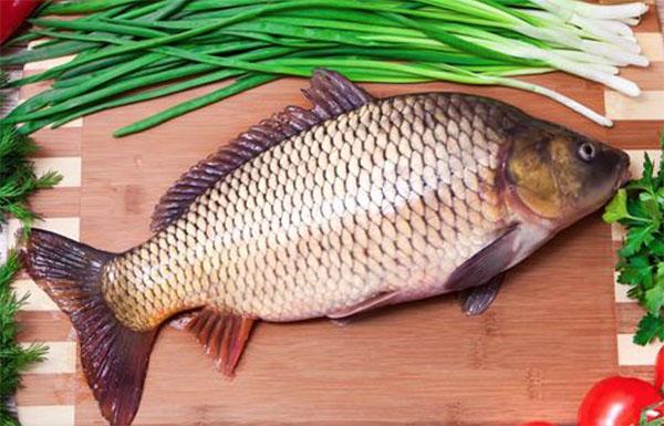 Cá chép rất giàu vitamin và dưỡng chất tốt cho bé ăn dặm