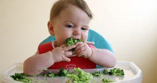Trẻ sẽ được tự bốc thức ăn thay vì được mẹ bón